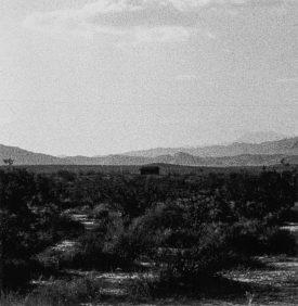John Divola, Four Landscapes Portfolio, Isolated House