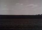 Landscape_near Littlefield_Texas_1975