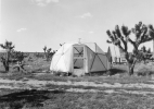 East-Mojave-counterculture-style-homestead-2003