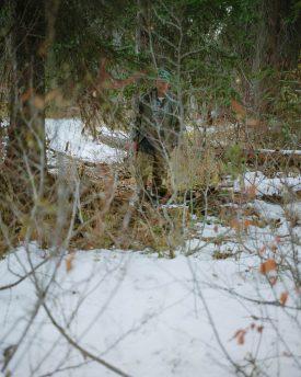 Ron Jude, Lick Creek Line, Group 1