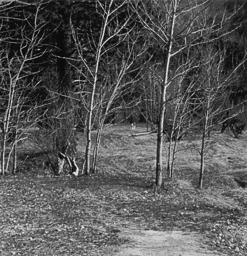 Occupied Landscape #3, (Yosemite), 1991/92 19″x19″ B&W Photograph