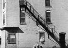 Lower West Side, Buffalo (German Shepard in front of building)