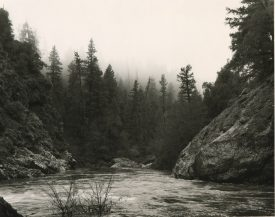 Wide river pass with tall evergreens in background, Mark Ruwedel, Pictures of Hell