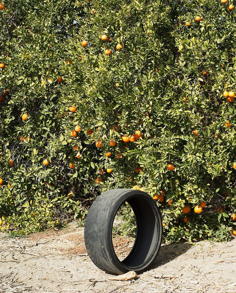 Ron Jude, Citrus #1 (w/ Tire)