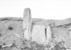 Necropolis, Pamyra (B2-N7), 2010
