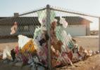 Windblown Trash on Fence
