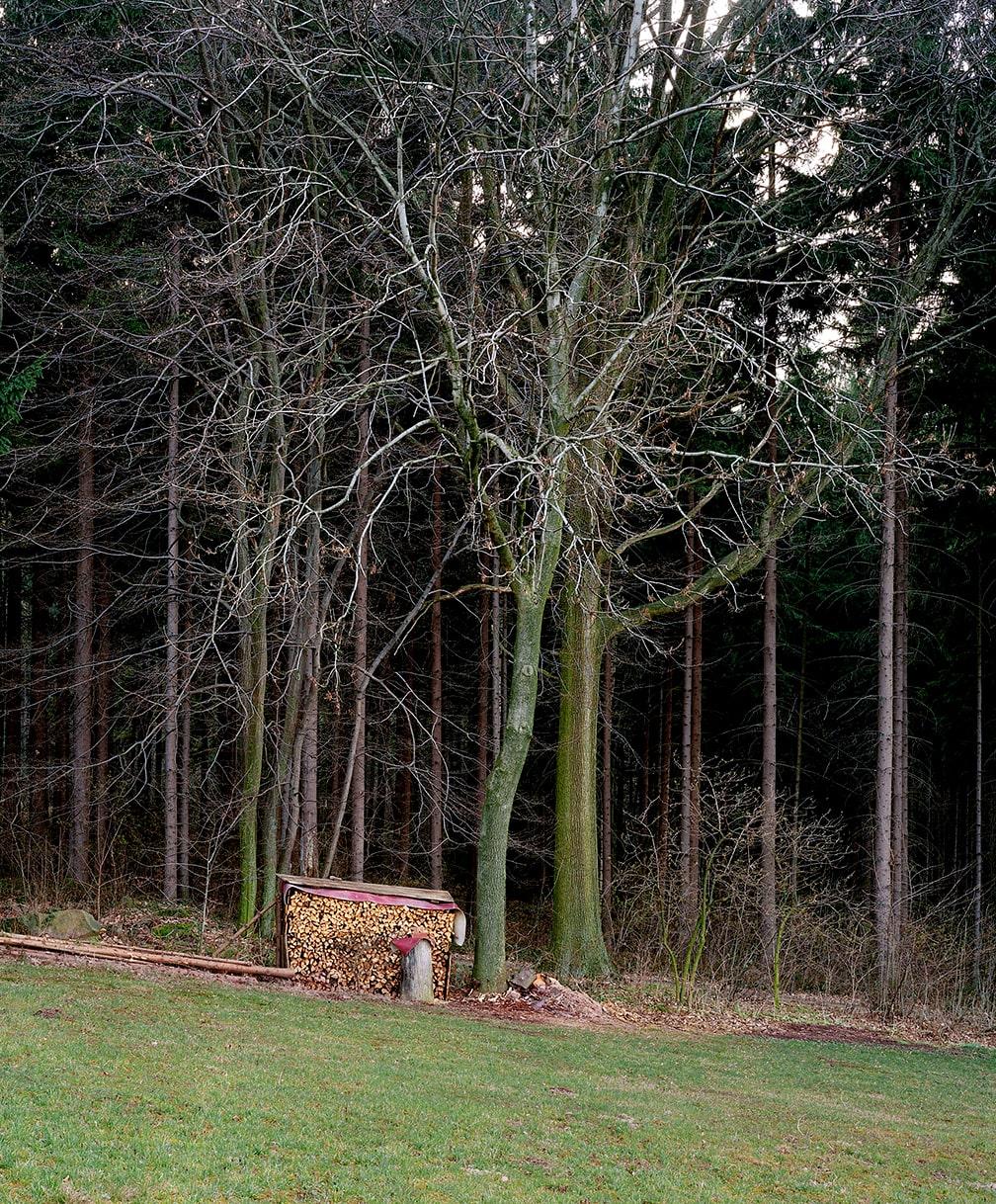9. Waldrand bei Spitzkunnersdorf, Lausitz, 1998