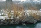 3. Willow Trees on River Glan, Rhineland – Palatinate 2013
