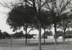 Texas Memories #2: Playground of David Crockett Elementary School where I Attended Grades 1-7, Wichita Falls, Texas, 1984/1988