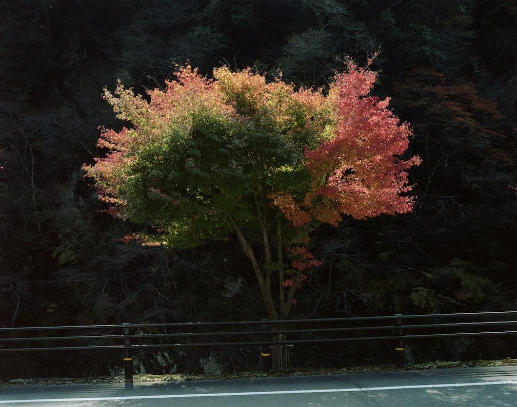 Toshio Shibata, Japanscapes
