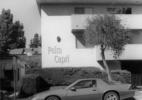 Ruwedel_Palms #20 _ Capri #1_2011 – 2018:19_14x16